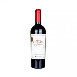 MIOLO Merlot Terroir, brasilianischer Rotwein, 750ml 15%vol